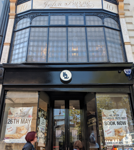Exterior of Liverpool Cat Cafe