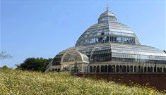 Sefton Park Palm House seen through the wild flower garden