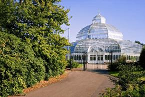 Palm House Glass House in the sun