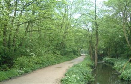 Sankey Valley Country Park & Trail
