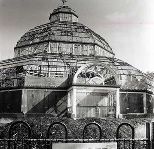 The Palm House derelict