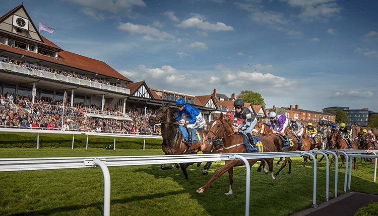 Chester Racecourse, horses in action