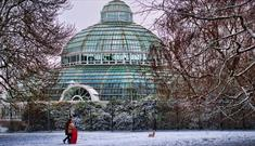 Sefton Park Palm House Preservation Trust