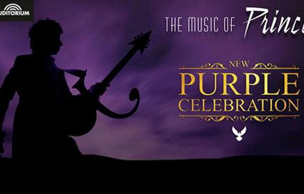 The Music of Prince